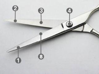ハサミの部位動刃と静刃