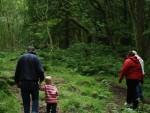 森林の癒しパワーで心身ともに健康的に! 森林セラピーの効果