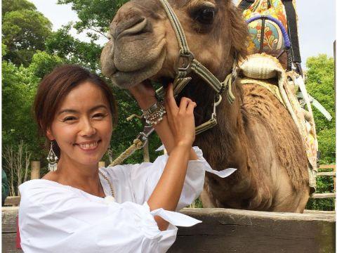 田中律子とラクダ