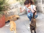 「この可愛さは神の領域!」猫と戯れるななせまるの虜になる人が続出!