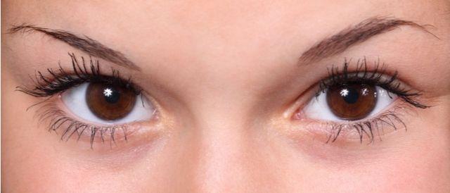 しっかりした眉毛の女性