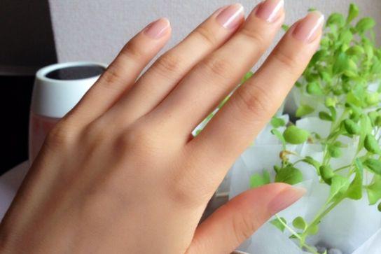 キレイな女性の手